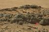 находки на марсе