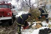 Итоги метелей: гибель пенсионерки, поваленные деревья и ожидание нового коллапса