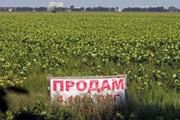 Продажа земли в Украине: аргументы за и против