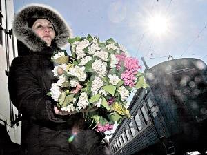Крымские первоцветы перепутали зиму с