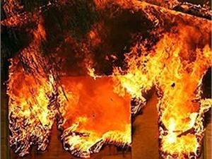 Ночью в Одесской области сгорела база отдыха!