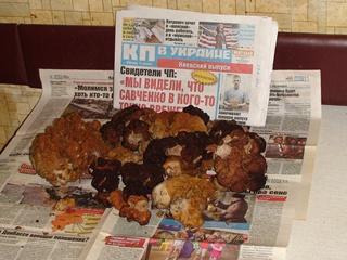 Под Киевом собрали первый урожай весенних грибов