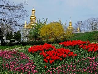 Будет Киев зеленым и летом, и зимой