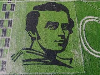 В Херсонской области создали портрет Шевченко, который видно из космоса