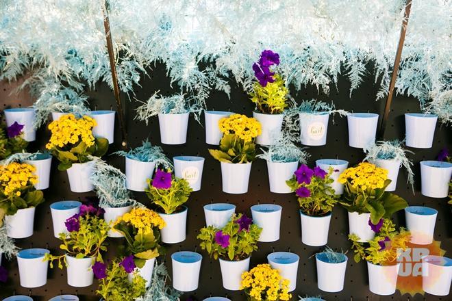 Цветочная галерея под открытым небом Харькова