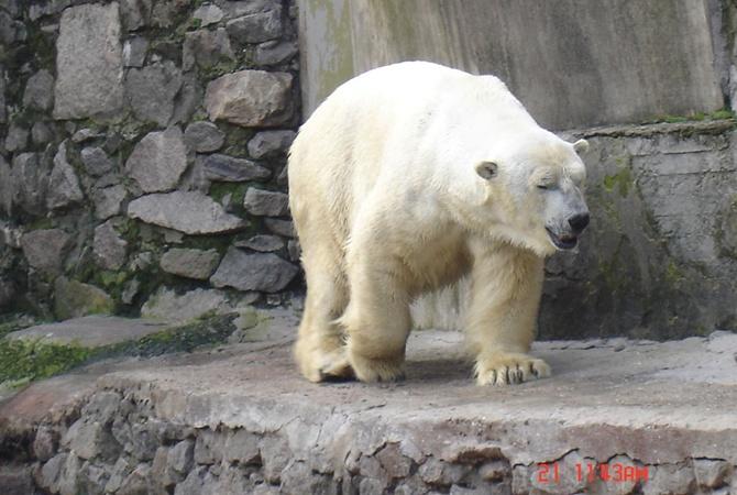 В николаевском зоопарке