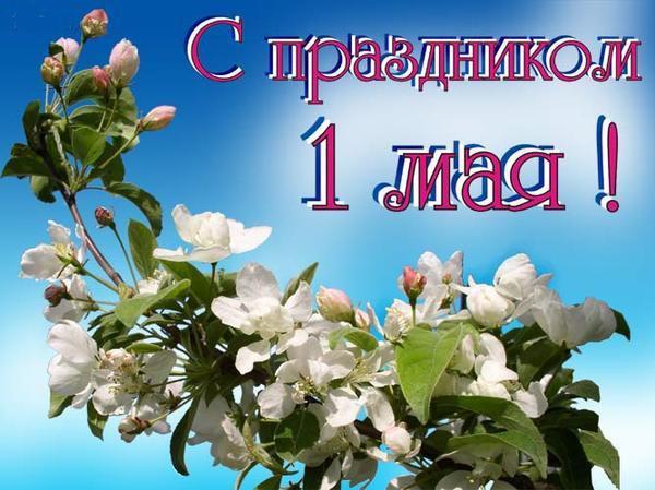 Прикольные и короткие СМС поздравления с 1 мая 2015 года - Новости на KP.UA