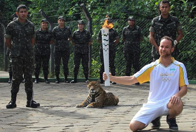 ВБразилии убили ягуара, участвовавшего вцеремонии эстафеты олимпийского огня