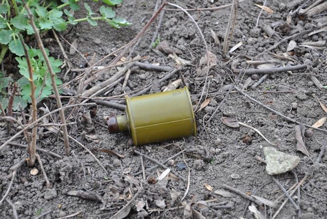 ВоЛьвовской обл. ночью водвор руководителя коммунального учреждения бросили гранату