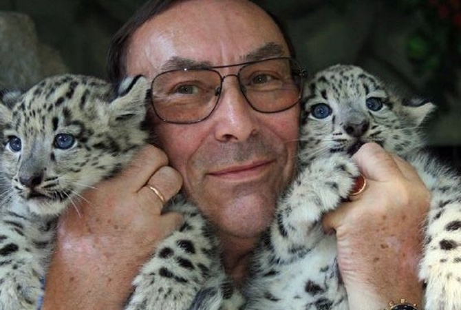 Посетители украинского зоопарка отравили снежного барса ипуму