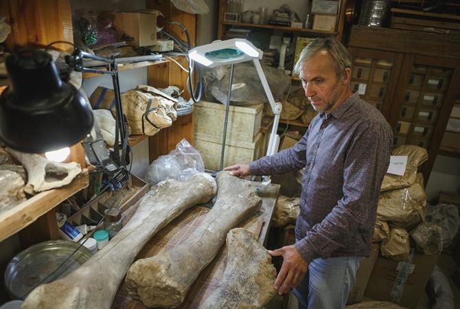 Томские палеонтологи отыскали самые большие залежи костей мамонтов