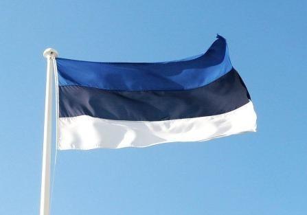 Процесс повторного выдвижения претендентов впрезиденты стартовал вЭстонии