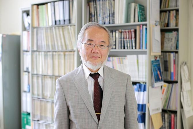 Нобелевскую премию помедицине дали заоткрытие клеточного «самоедства»