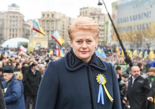 Президент Литвы посетит государство Украину софициальным визитом зимой