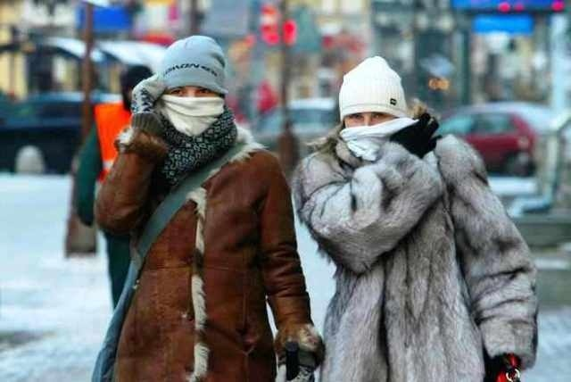 Кконцу недели вгосударстве Украина снова ударят морозы до23 градусов