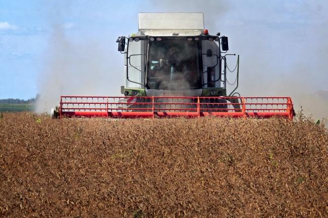 В2016 году вУкраине собрали рекордный урожай зерновых,— Минагрополитики