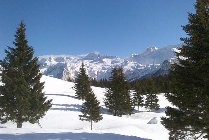 Лавина накрыла группу лыжников вАльпах