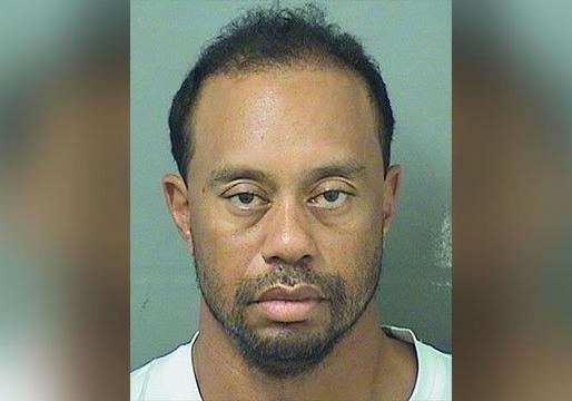 Известного гольфиста Тайгера Вудса арестовали запьяное вождение