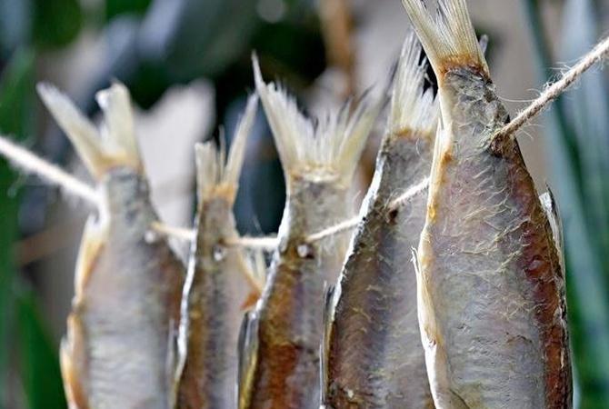 НаЗапорожье зафиксирован ботулизм— прекращают реализацию рыбы
