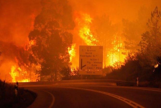 Неменее 20 человек погибли из-за лесных пожаров вПортугалии