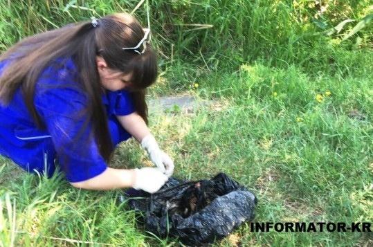 Найденные вводоеме останки принадлежат Амине Менго— милиция