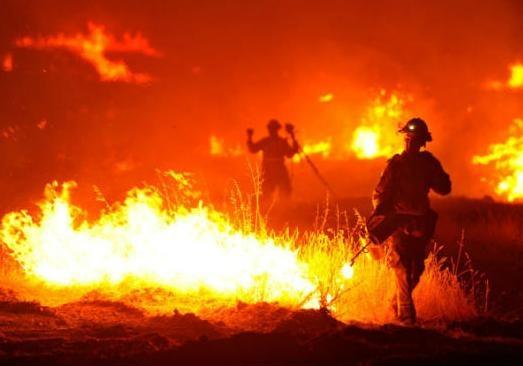 Итальянских пожарных уличили вумышленных поджогах леса ради бонусов