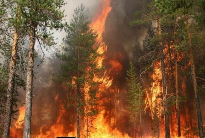 8 дачных домов сгорело вЛиманском районе из-за неизвестного лица