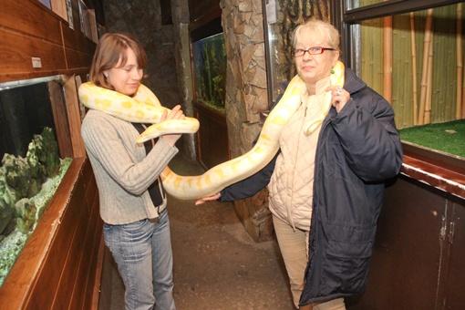 Такой шарфик вряд ли наденешь на новогоднюю вечеринку. Фото: Максим Скрипка и сайт niklife.com.ua