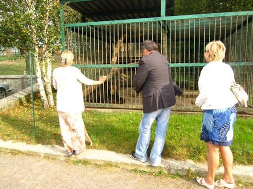 Михаил Михалыч появился в зоопарке еще Мишуткой.