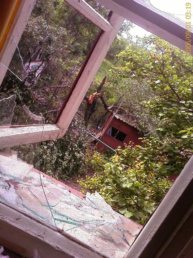 Взрывами разбило окно и сломало дерево