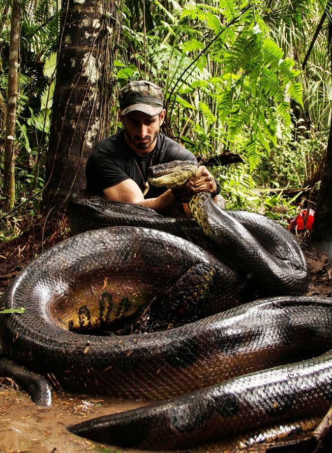 Американский натуралист и автор фильмов о дикой природе Пол Розоли. Фото: Discovery Channel