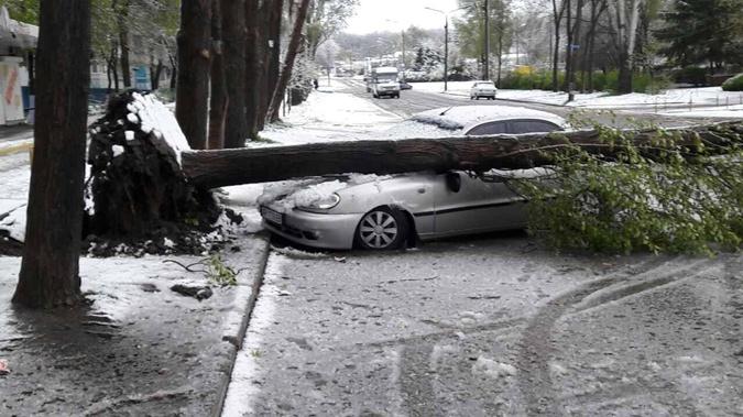 Снег с ураганом прошелся по Запорожью.