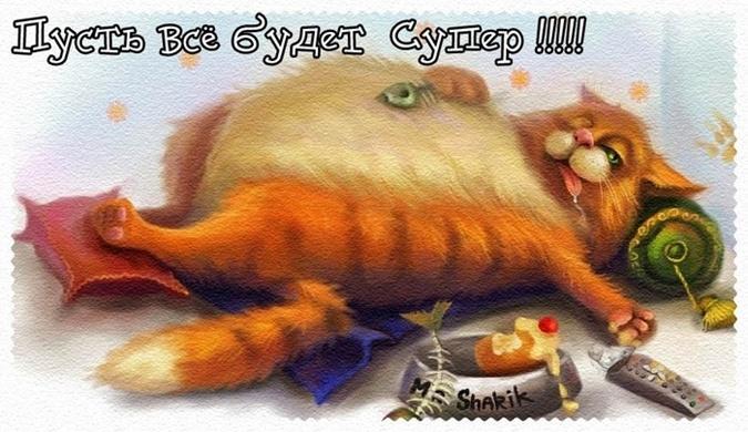 https://ki.ill.in.ua/a/675x0/24297835.jpg