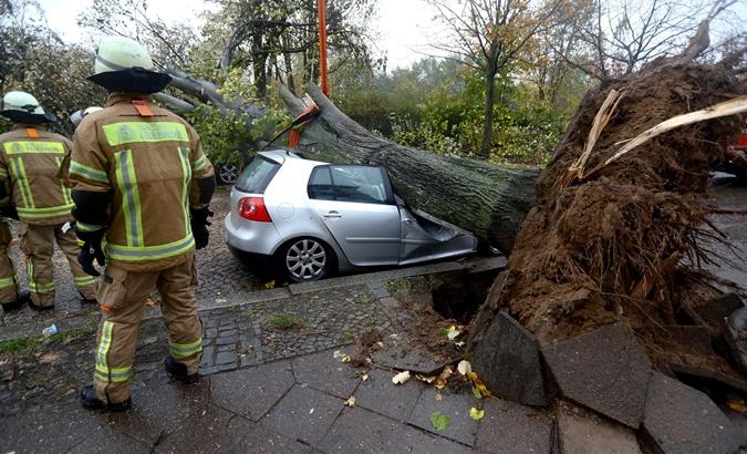 Падающие деревья крошили автомобили. Рейтер