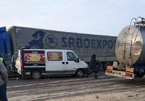 В аварии на трассе Киев-Чоп погиб конь фото 1