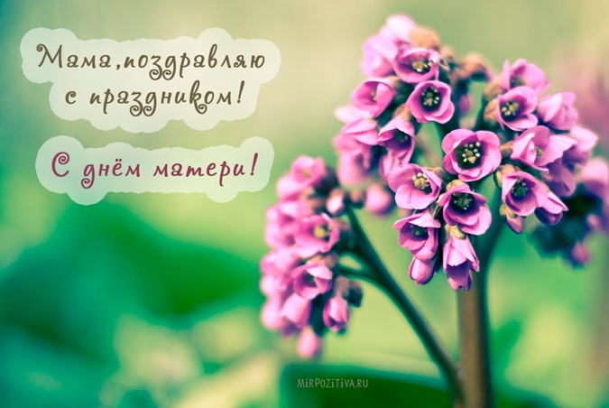 Изображение - День матери поздравление 24344431
