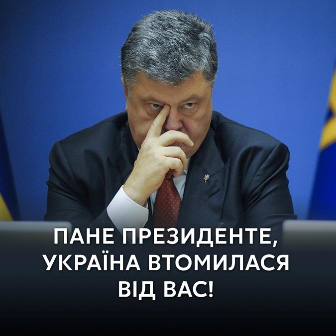 Порошенко вручив державні нагороди представникам української громади у США - Цензор.НЕТ 3664