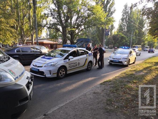 В Кривом Роге разыскивают водителя авто, насмерть сбившего маленькую девочку  фото 1