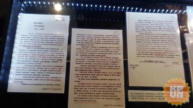 Документы, которые хранились в секретном архиве, может увидеть каждый.