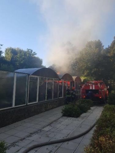 В Черкассах горел зоопарк: животных спасли, но не сохранили фото 3