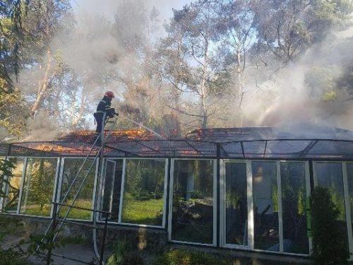 В Черкассах горел зоопарк: животных спасли, но не сохранили фото 1