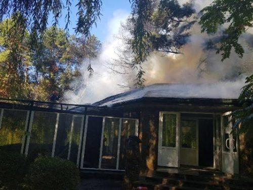 В Черкассах горел зоопарк: животных спасли, но не сохранили фото 2