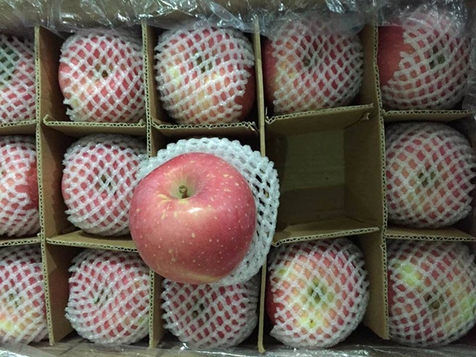 Яблоко, которое рвали руками, а не собрали на земле в саду, ценится дороже, но и в этом году цена пока не поднялась выше 10 гривен. Фермеры надеются, что стоимость еще немного подрастет зимой.