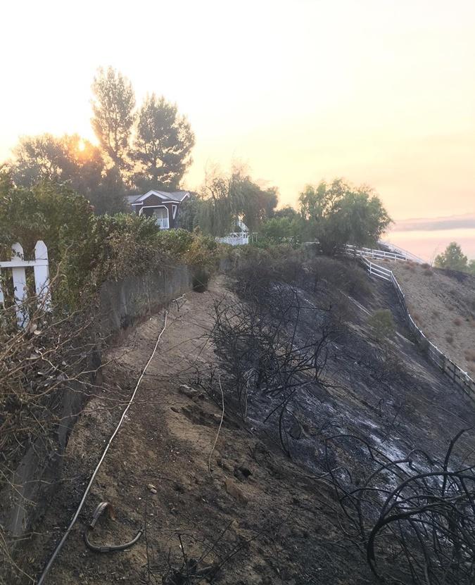 Голливудские пожары звездных домов: сгорели полмиллиарда долларов фото 5