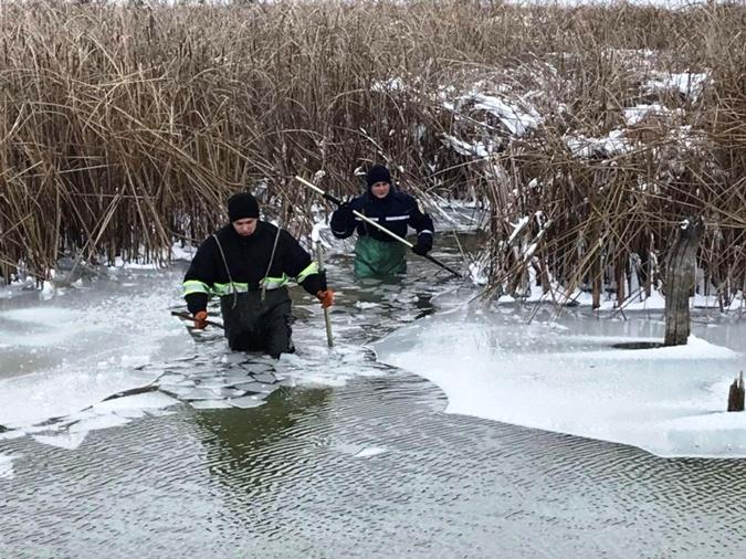 Добраться до лебедей иногда трудная задача. Фото: ГСЧС Украины