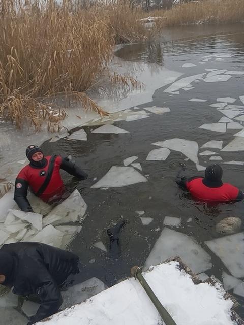 В Днепре на спасение уток отправили отряд водолазов фото 2