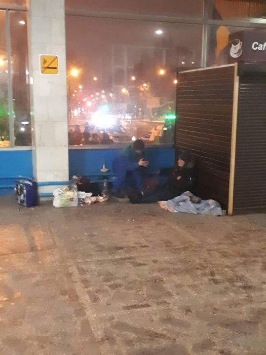 Бездомные буквально