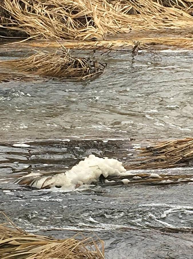 Загрязненная река в Житомирской области изменила свой цвет фото 3