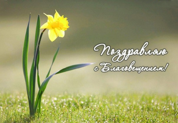 Поздравительные картинки на Благовещение. Фото: foma.ru