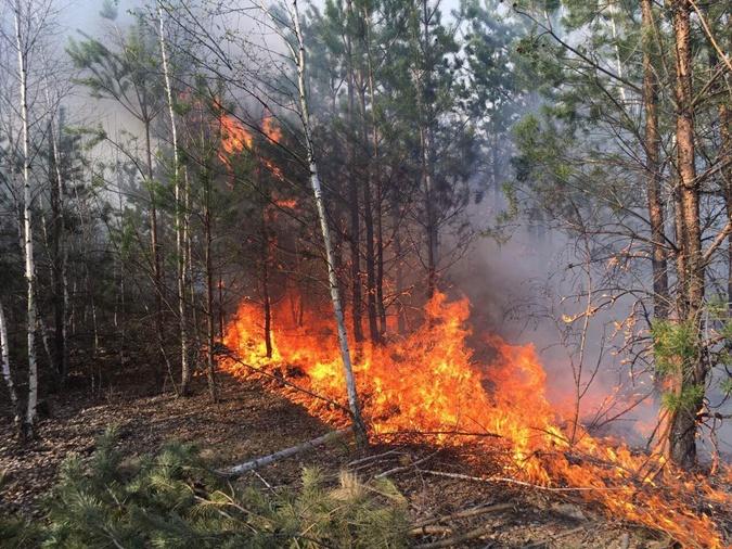 пожар около границы с Беларусью.